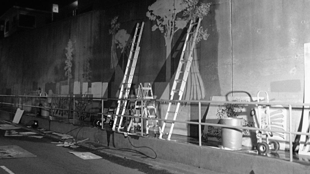 rgp_ladders_16x9_bw
